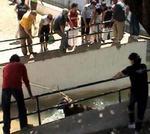 Beas 2008 ahogado