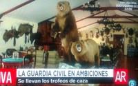 El 'zoo ilegal' de Jesulín de Ubrique