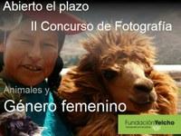 II concurso de Fotografía de la Fundación Yelcho